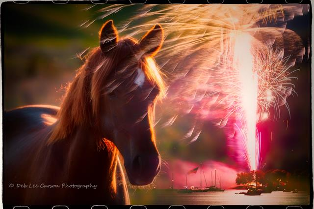 horse and fireworks